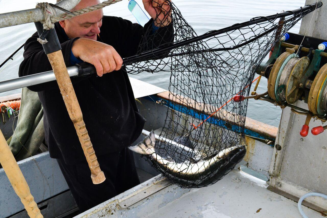 Fishermen fish in net.jpg