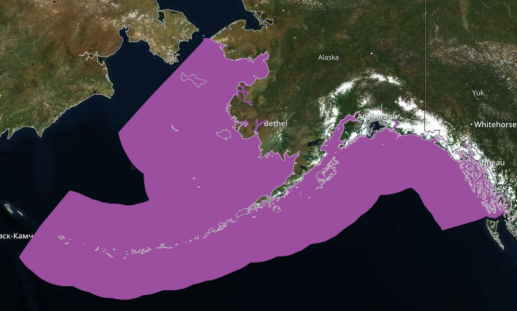 Pink EFH - According to The Gulf of Alaska Data Integration portal, these maps include areas essential for