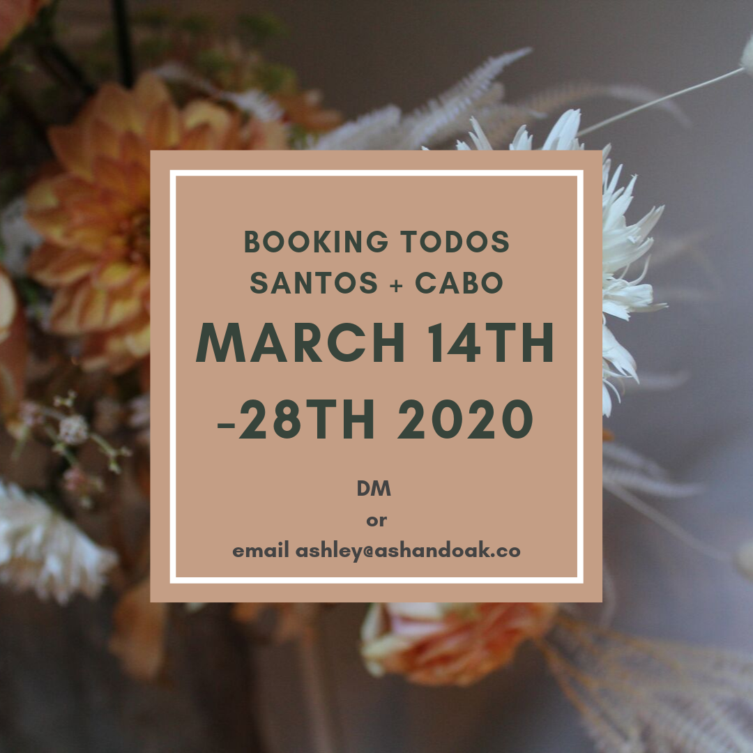 Booking March 2020 for Cabo and Todos Santos