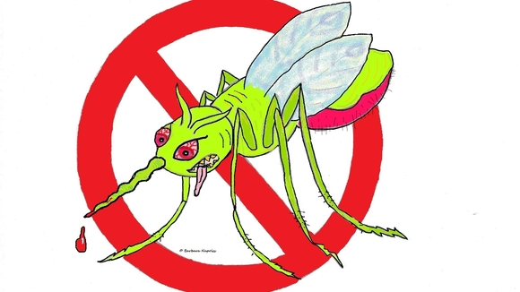 Let Agricultural Commissioner Adam Putnam know how you feel about releasing genetically modified mosquitos in the environmentally-sensitive Florida Keys.