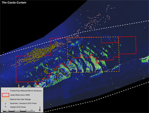 """This illustration by U.S. Fish and Wildlife shows the """"casita curtain,"""" with colored dots representing the GPS coordinates of illegal artificial lobster habitats discovered by NOAA's Office of Law Enforcement in a 2008 investigation of a highly organized illegal dive industry.Photo credit: U.S. Fish and Wildlife."""