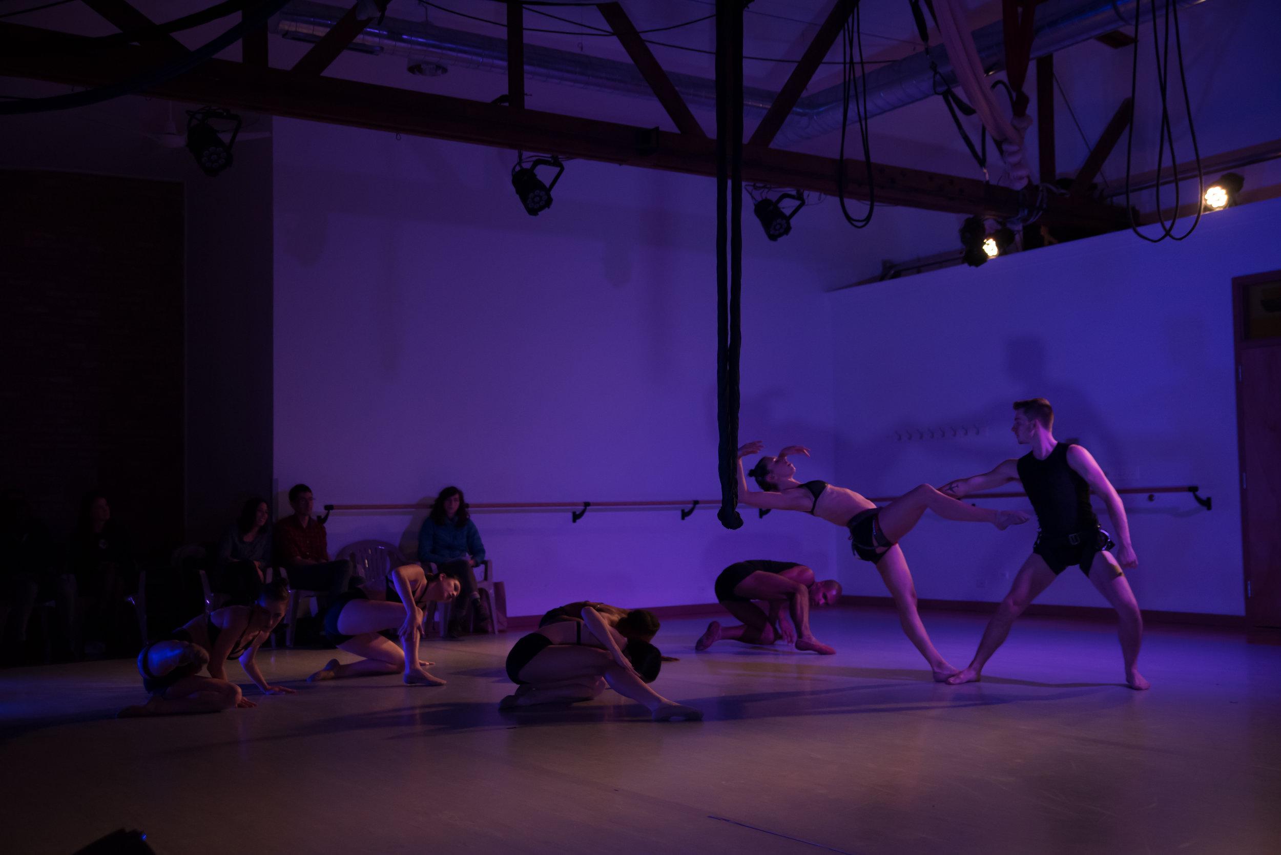 aerial dance chicago-5882.jpg