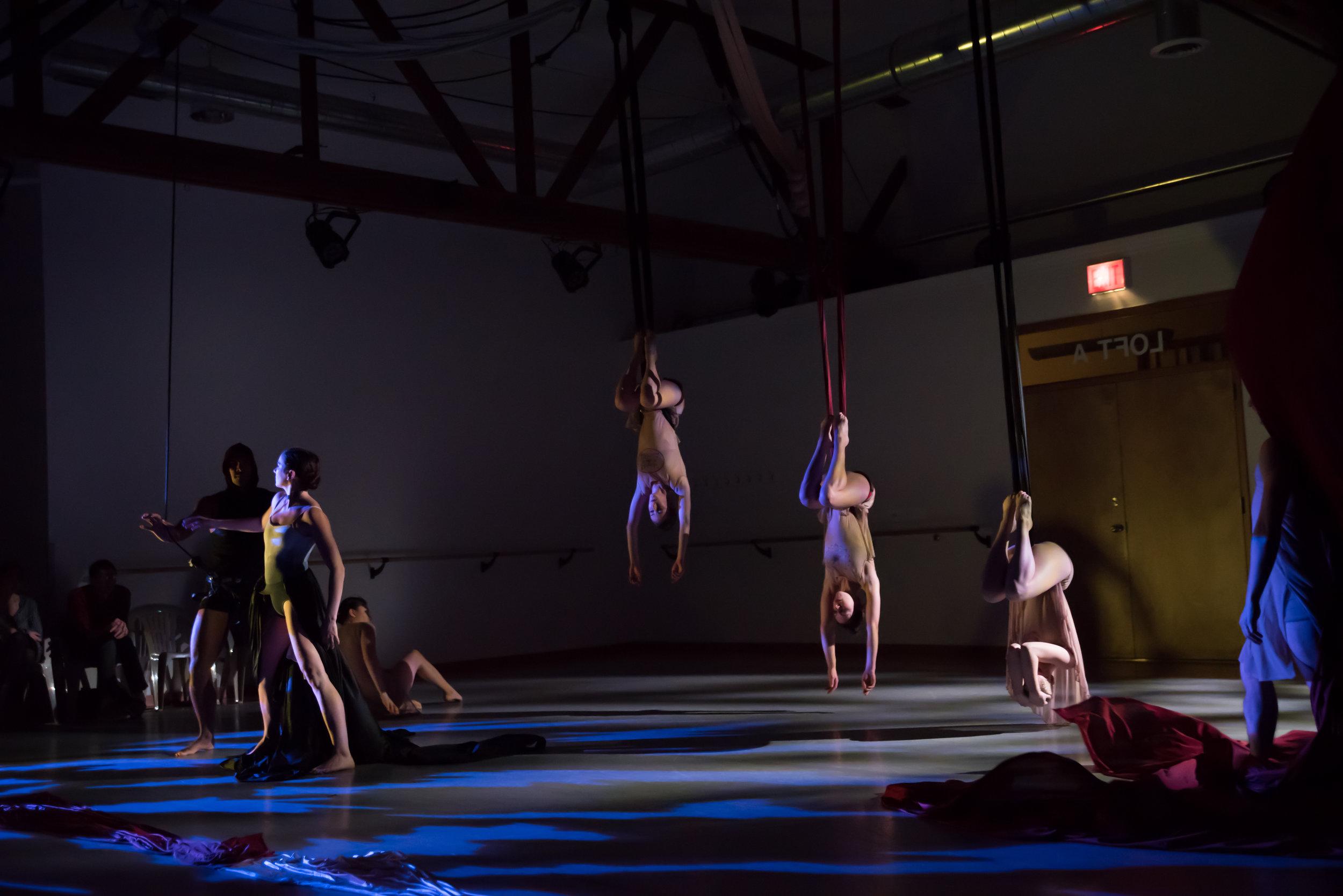 aerial dance chicago-6112.jpg