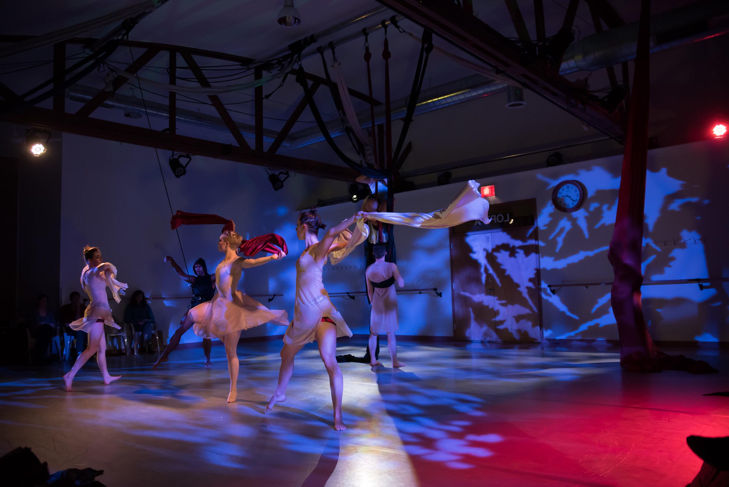 aerial dance chicago-6141.jpg