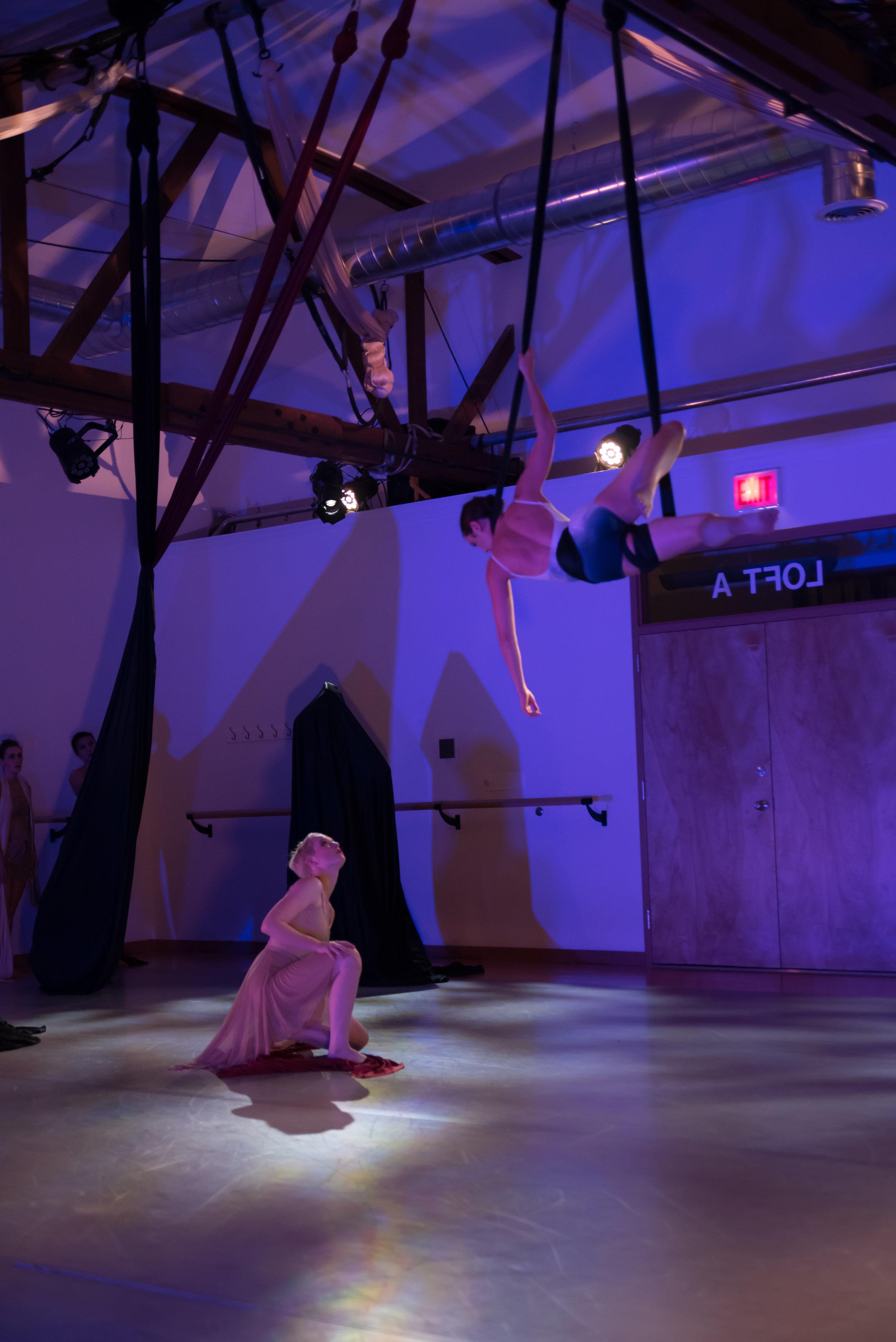aerial dance chicago-6243.jpg