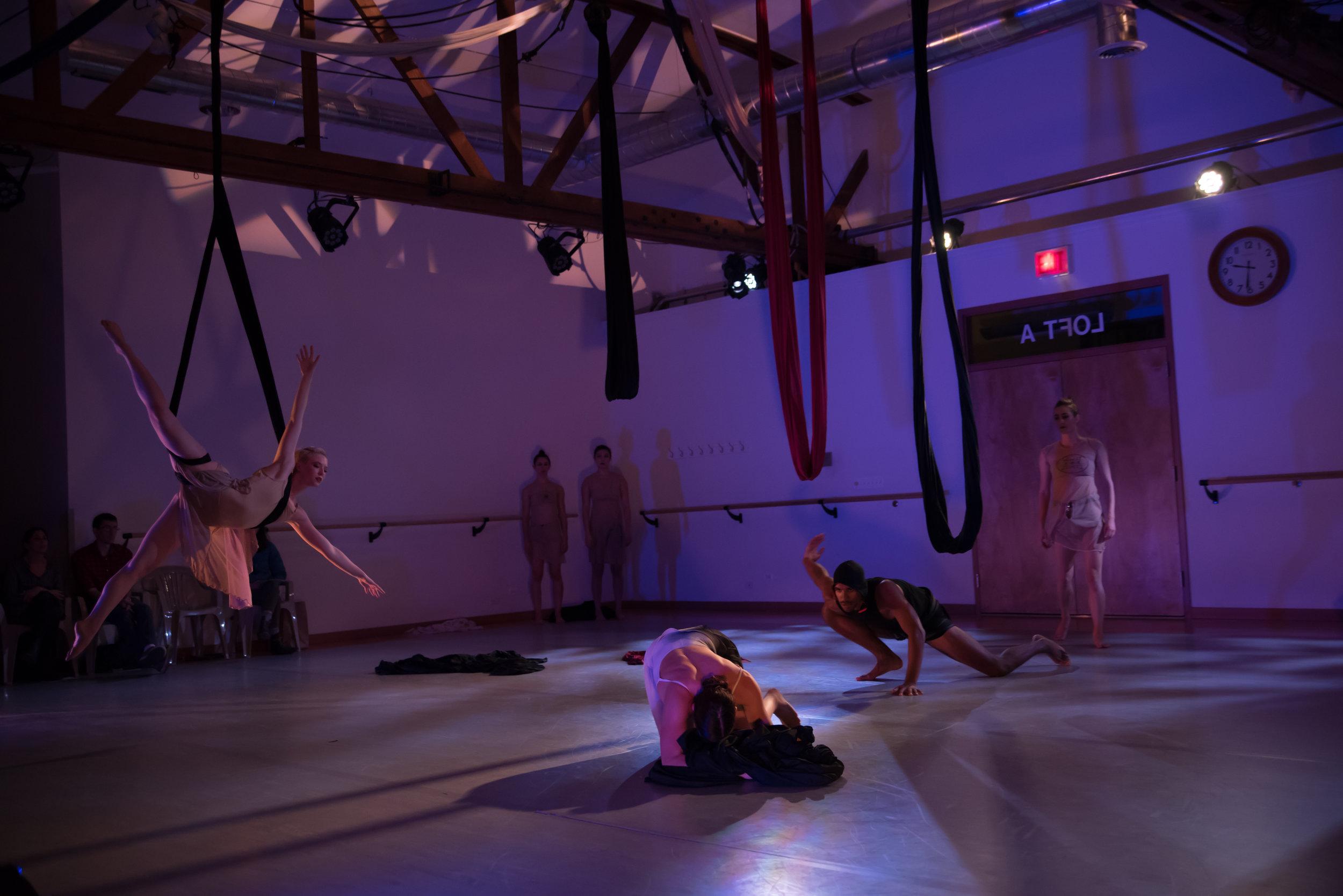 aerial dance chicago-6257.jpg