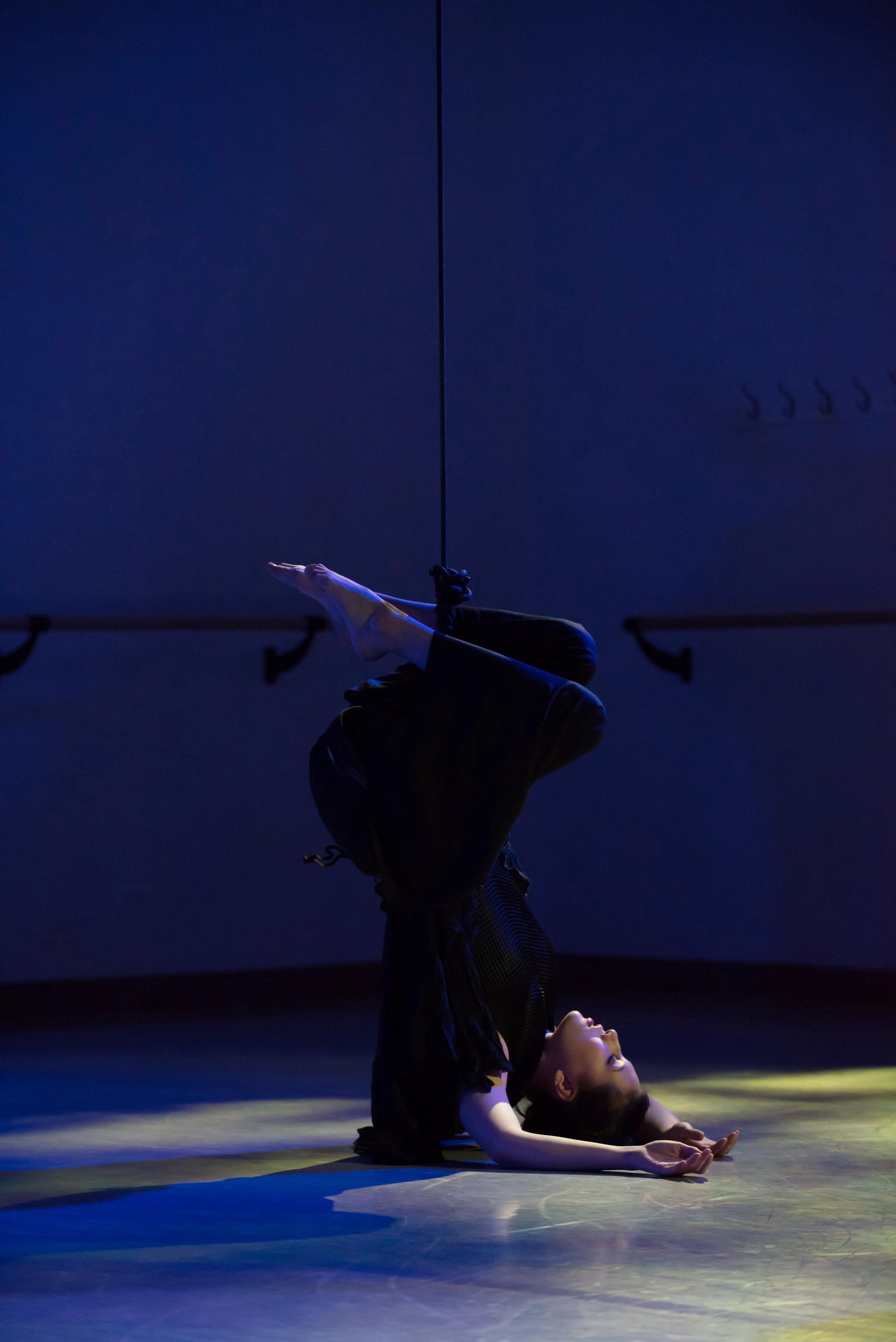 aerial dance chicago-5725.jpg