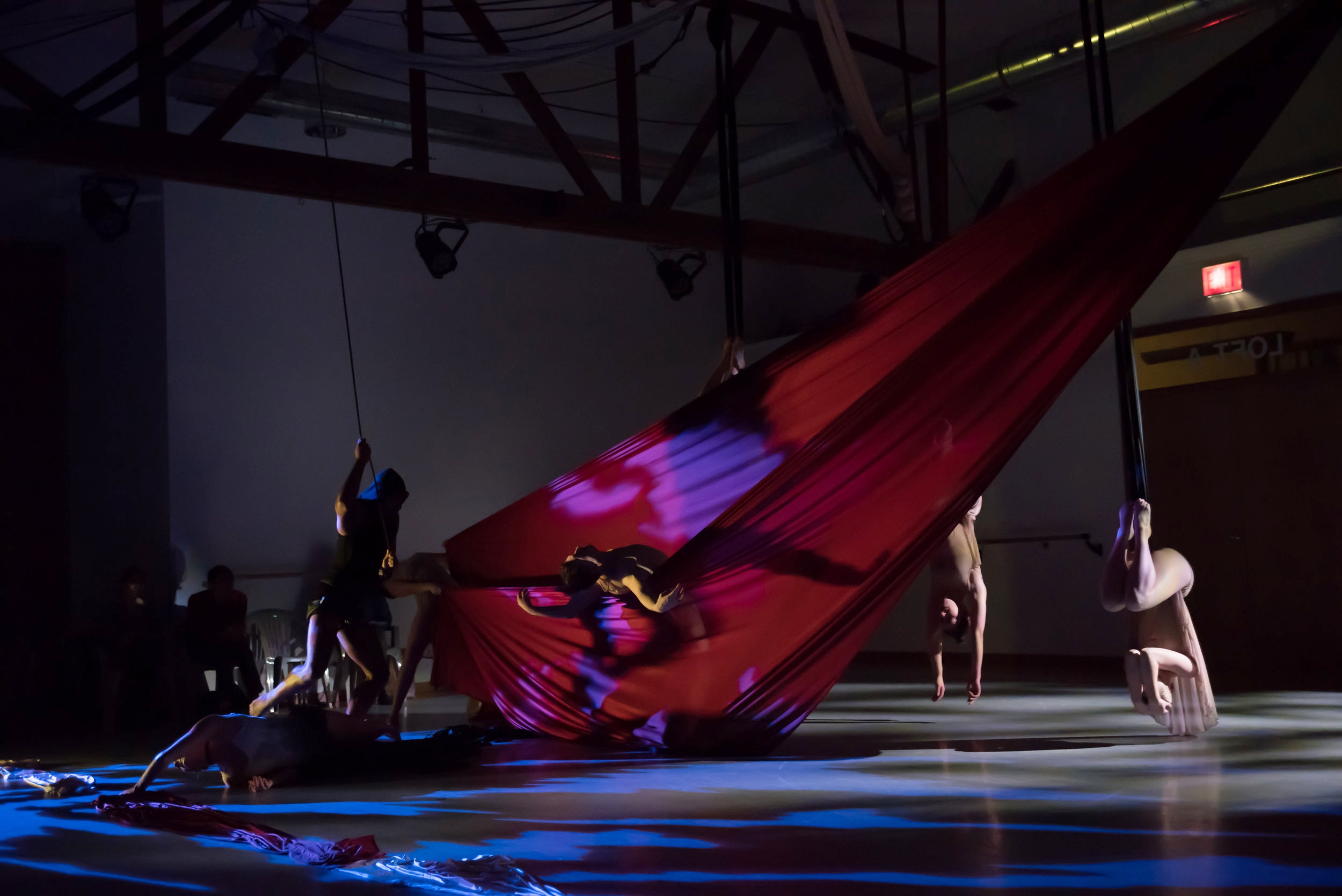 aerial dance chicago-6110.jpg