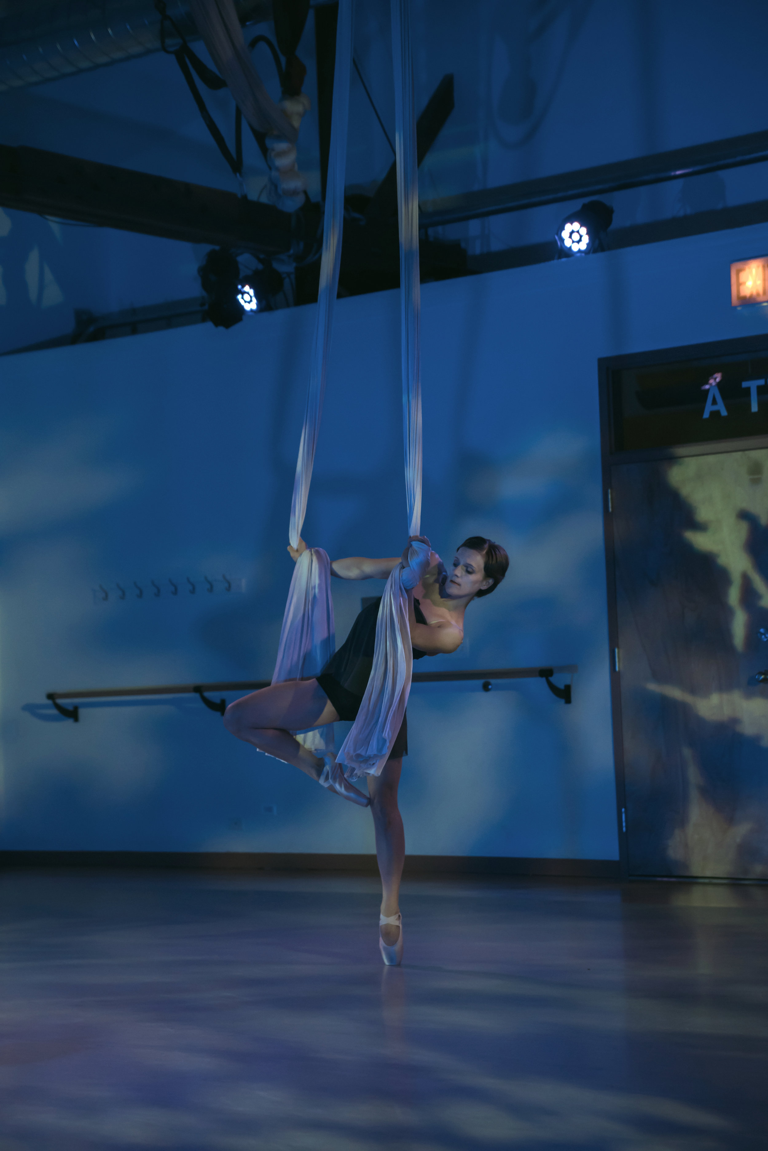 aerial dance chicago-6043.jpg