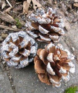 Glitter Pine Cones
