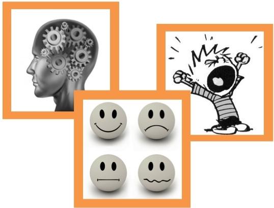Cognitive, Emotional, and Behavioral Investment