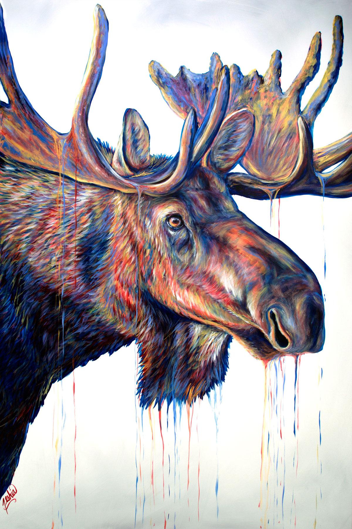 Velvet-Moose-72x48-WEB.jpg