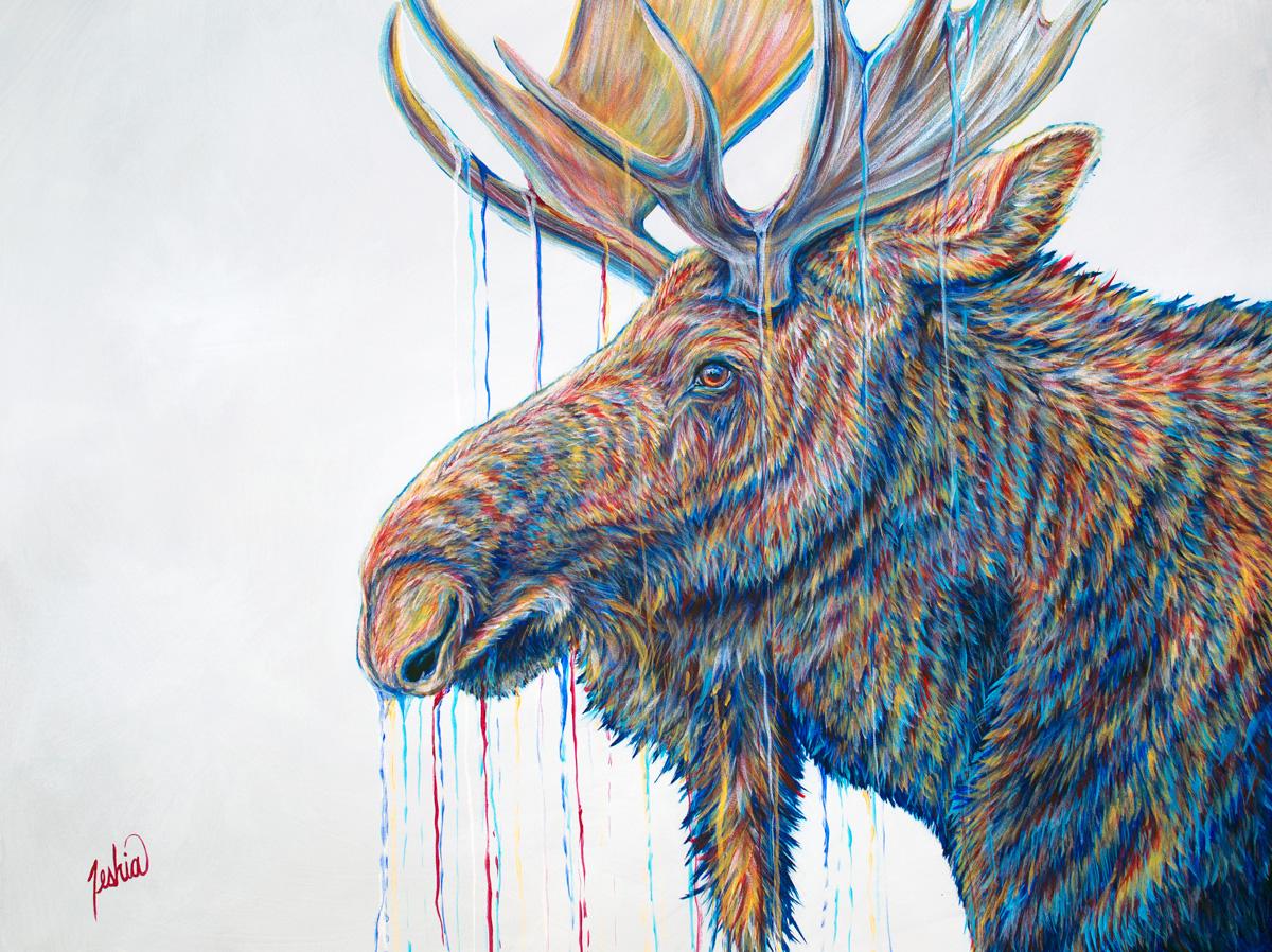 Moose-Musings-36x48-WEB.jpg