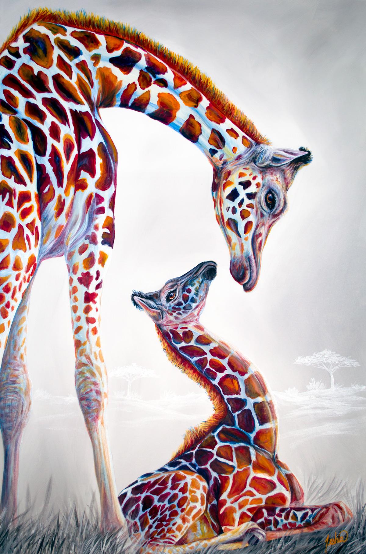 Masai-Momma-72x48-WEB.jpg
