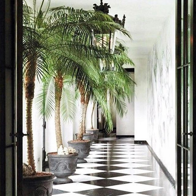 Love this checkered and chic look. Black and white floors and elegant flourishes inspired our Paradise Found Collection. Visit the link in our bio to view the full suite of invitations and event stationery. Source unknown #lovelore #Paradisefound #blackandwhite #tropical #design #palms
