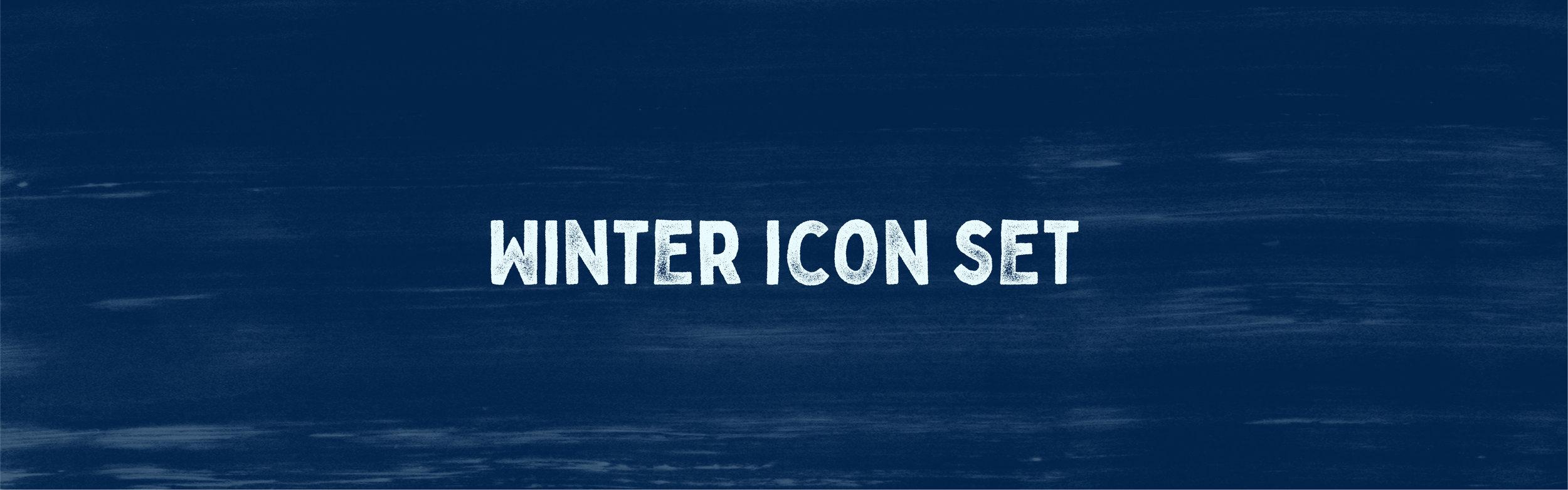 Winter Icon case study-01.jpg