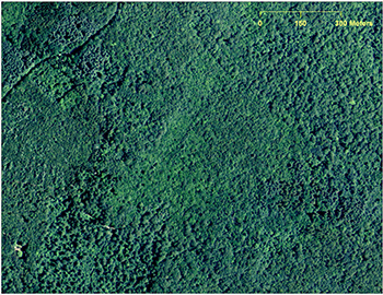 A 2012 aerial image of Plainfield, Conn., (above) shows a forested landscape while a digital elevation model derived from LiDAR data for the same area (below) reveals a network of stonewalls, an old road and building foundations. (CTECO and USDA NRCS)