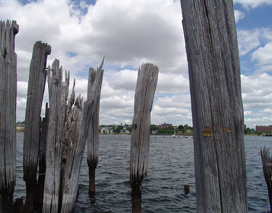 There are thousands of wood pilings, some sticking 6 feet or so out of the water, and many others submerged that make upper Narragansett Bay, at the mouth of the Seekonk River, hazardous for boaters. (Frank Carini/ecoRI News)