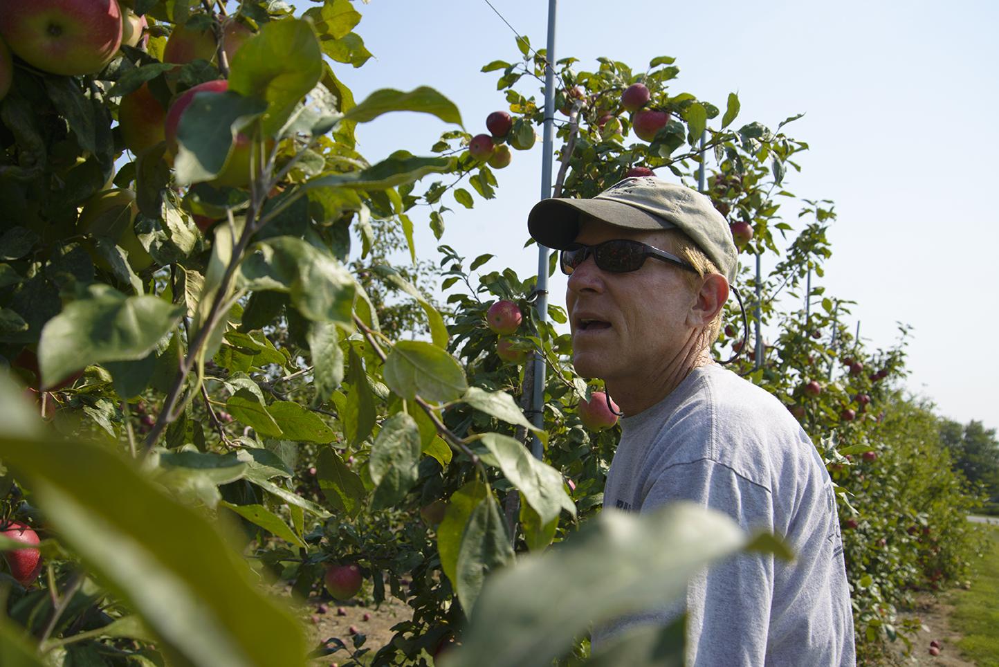 Jan Eckhart, owner of Sweet Berry Farm in Middletown, R.I.
