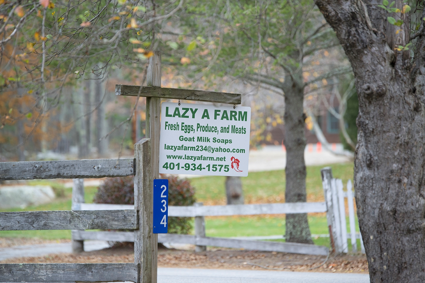 A Lot of Hard Work Goes on at Lazy A Farm