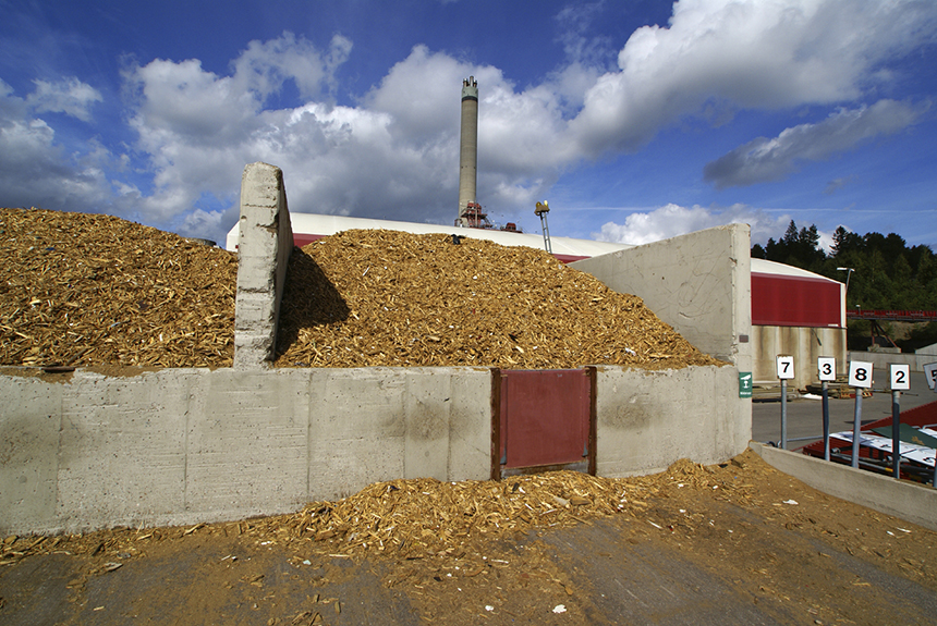 Most of the biomass electricity used in southern New England is imported from wood-burning power plants in New Hampshire and Maine. Tons of carbon dioxide are emitted in the process. (istock)