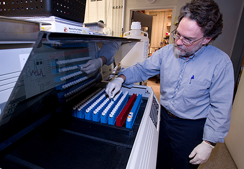 WHOI biologist Mark Hahn has been studying PCB-resistant killifish in New Bedford Harbor since 1995. (Tom Kleindinst/WHOI)