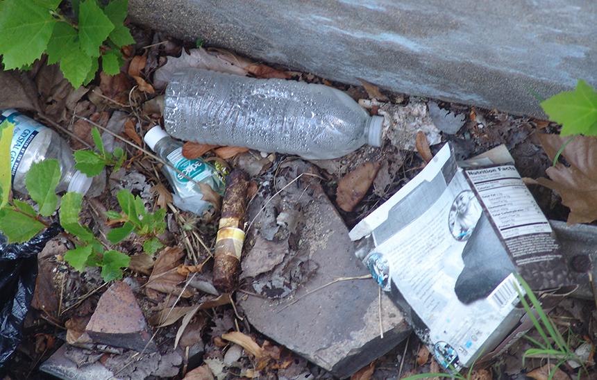 Litter, especially of the plastic variety, costs taxpayers plenty. (Frank Carini/ecoRI News)