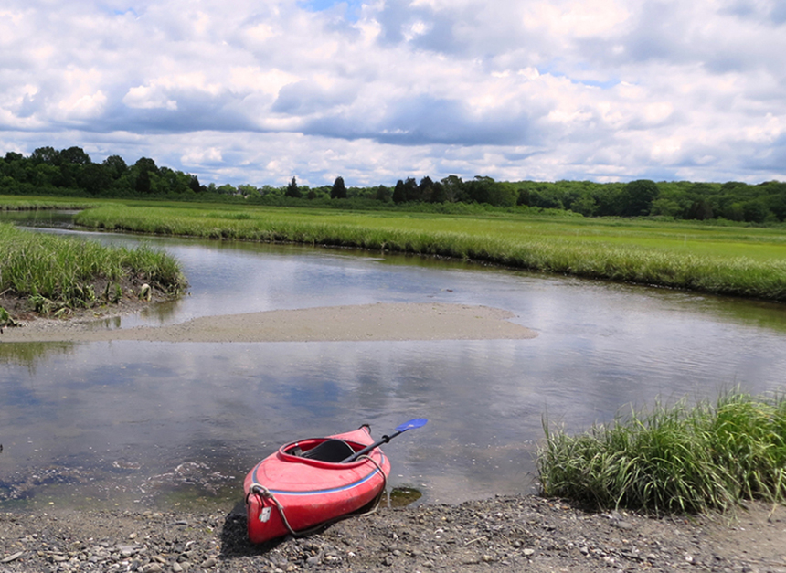 The Ocean State's vital collection of salt marshes provide important environmental and economic benefits. (NBNERR)