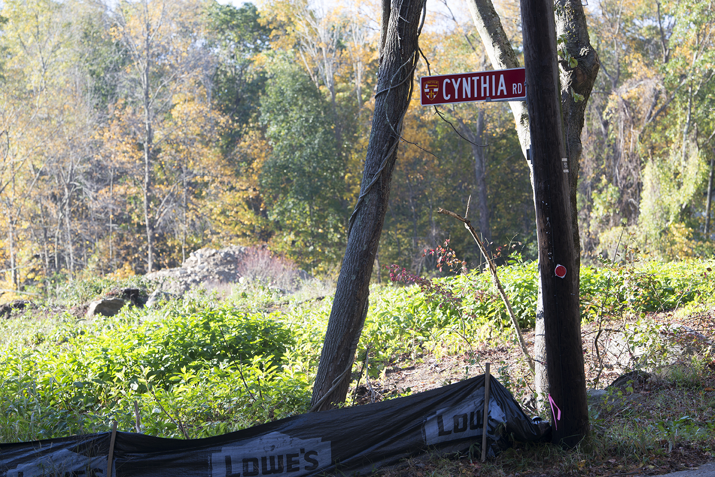 This 2-acre lot on Cynthia Road in Lincoln, R.I., will soon be home to two houses. Across the street is a historic spring and an old homestead. (Joanna Detz/ecoRI News)