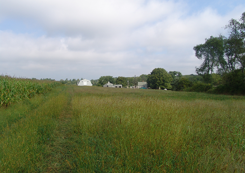 Wingover Farm in Tiverton, R.I., currently features fields of hay and corn, about 20 acres of woodland, and a secluded pond. (Frank Carini/ecoRI News)