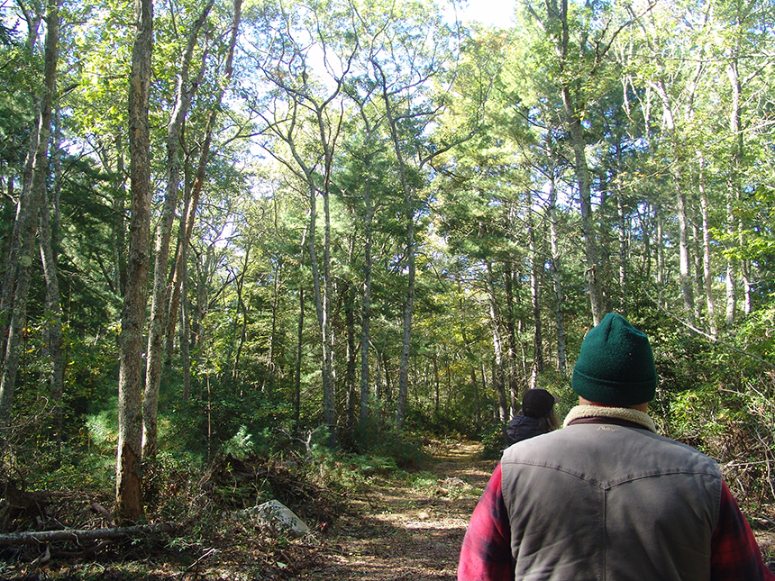 Rhode Island arborist Matt Largess recently led a tour of Wingover Farm's forest. He was impressed with what he saw. (Frank Carini/ecoRI News photos)