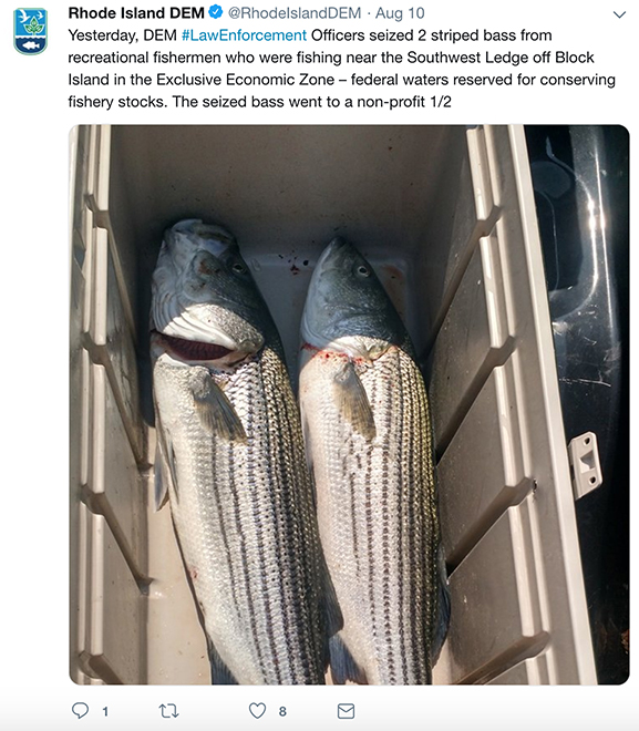Rhode Island likes to publicize when someone is caught with too many of the wrong fish but hides polluting businesses from public view. (DEM/Twitter)