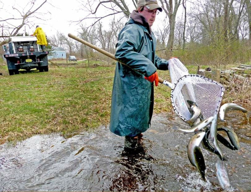 Protecting Rhode Island's environment requires more than DEM stocking local waters with trout and government officials noting that recreational fishing contributes more than $130 million to the economy annually. (Pinterest)