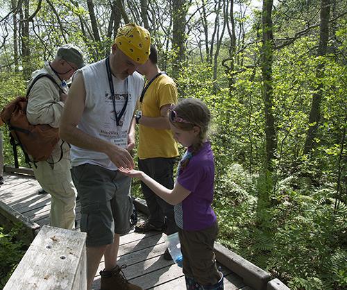 The annual BioBlitz is the Rhode Island Natural History Survey's signature citizen science event. (ecoRI News)