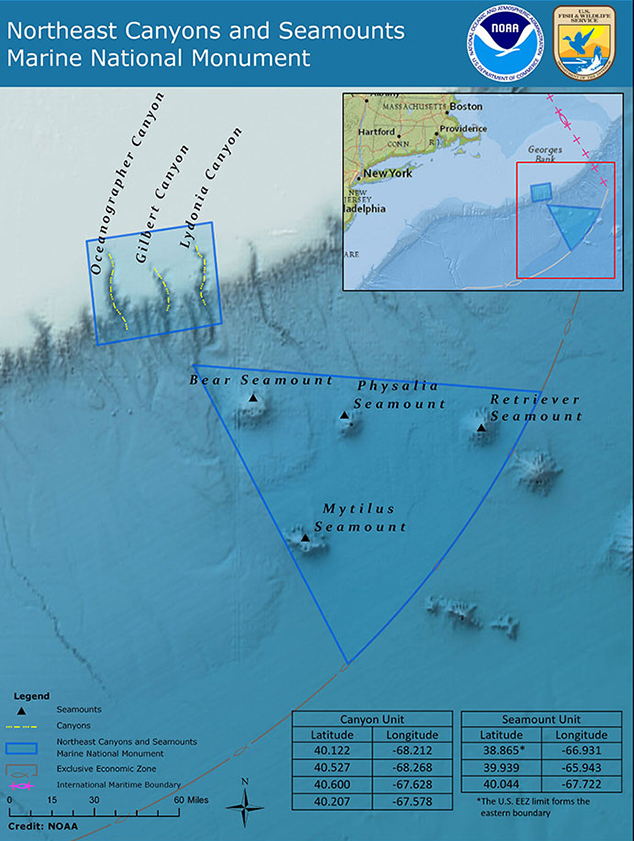 About the size of Connecticut, the monument includes two distinct areas, one that covers three canyons and one that covers four seamounts. (NOAA)