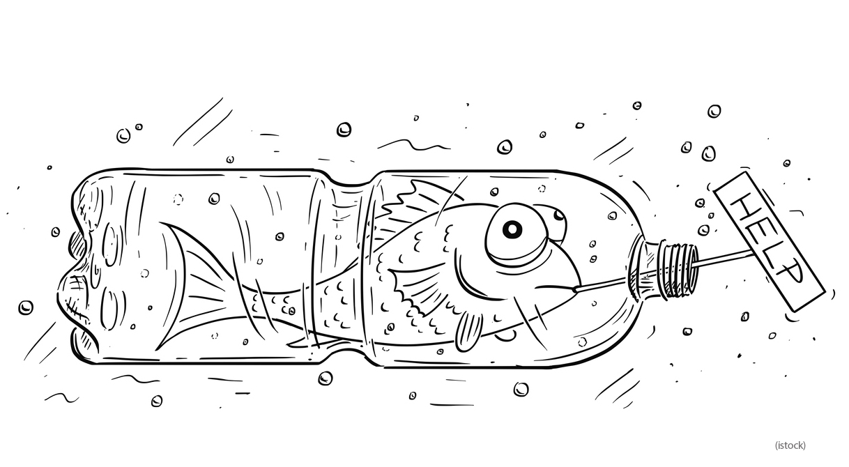 Cartoon-of-Fish-Trapped-in-Plastic-Bottle-Holding-Help-Sign-1009159686_1315x801(1).jpg