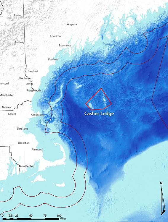 The 550-square-mile area is about 80 miles off the New England coast. (NOAA)