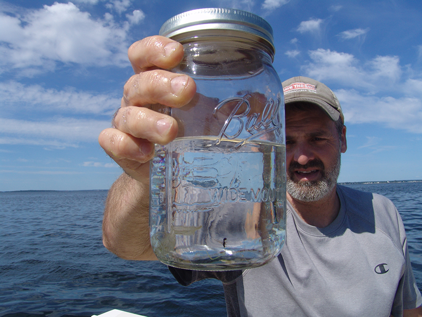 David Prescott, Save The Bay's South County coast keeper, holds up a mason jar containing 28 bits of plastic collected from upper Narragansett Bay during one 20-minute trawl. The pieces are not easy to see, and that's the problem. The only thing easy to see is an unlucky ant.