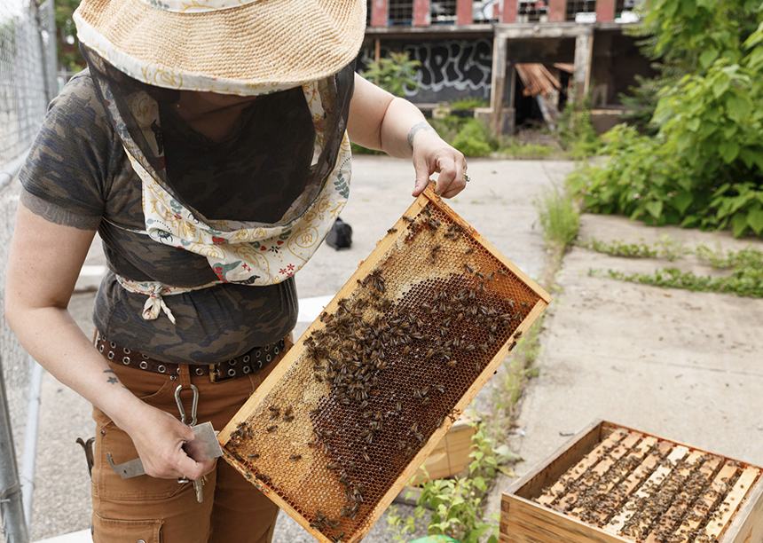 Cindy Holt became a master beekeeper last year.