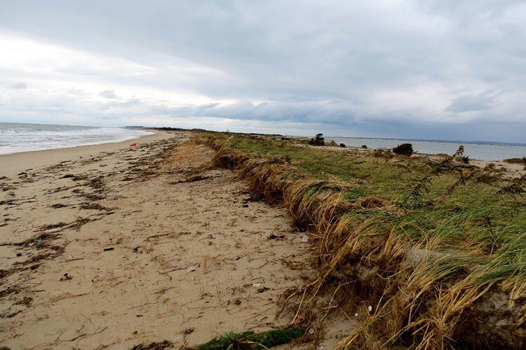 Superstorm Sandy left Napatree Point battered. Hurricane Rhody likely will cause more damage. (Janice Sassi)