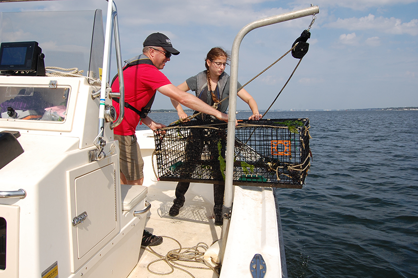 Fish surveys being done by The Nature Conservancy's Heather Kinney and Tim Mooney are finding plenty of life in the upper reaches of Narragansett Bay, as the nitrogen output from wastewater treatment plants have been reduced. (Todd McLeish/ecoRI News)
