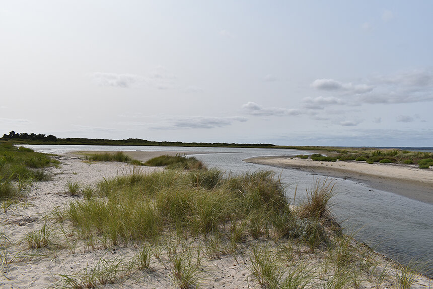 The Napatree Point lagoon is home to a half-dozen different kinds of fish and is an important horseshoe crab nursery. (Frank Carini/ecoRI News)