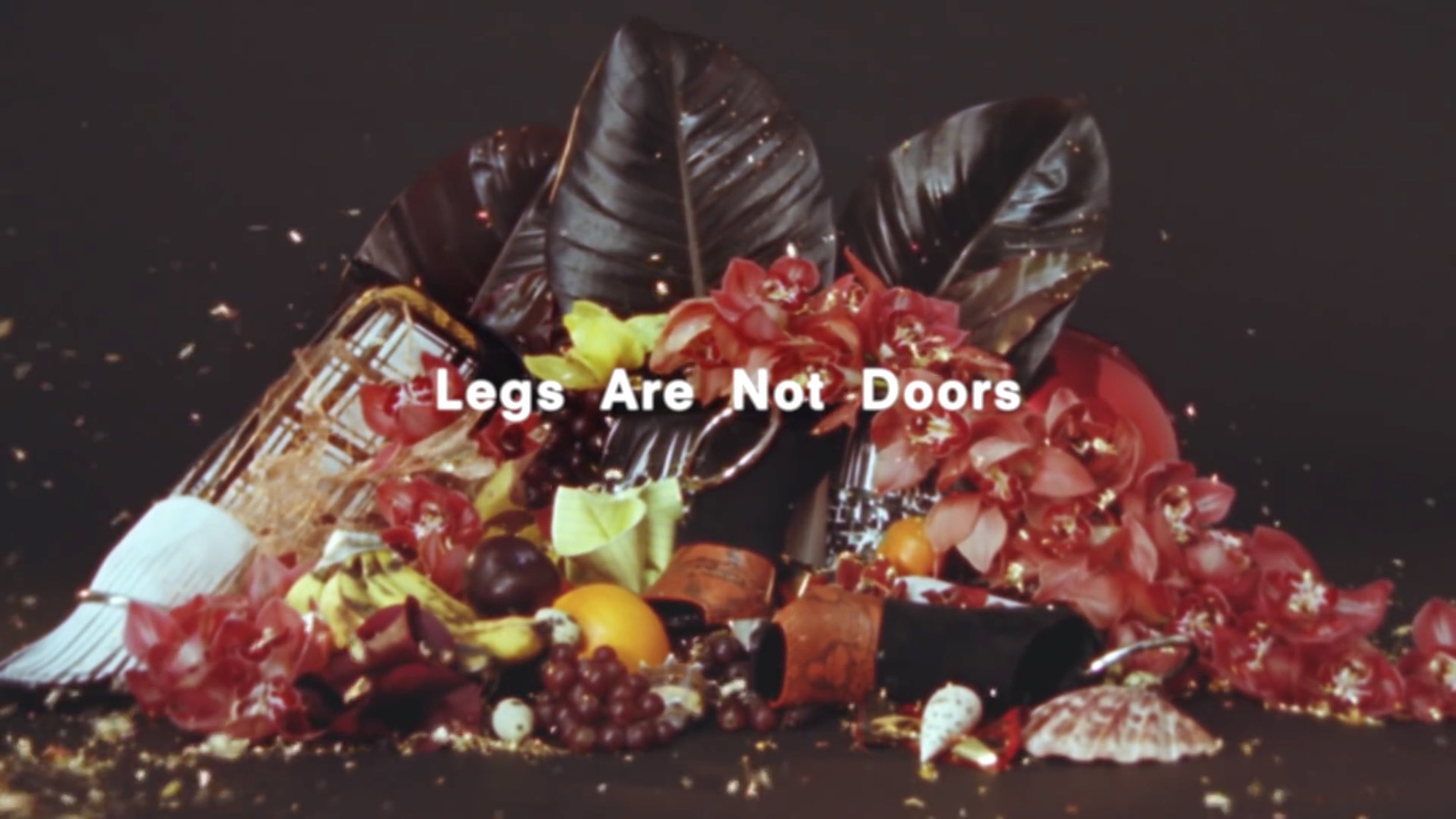 Proenza Schouler X 'Legs Are Not Doors' by Harley Weir