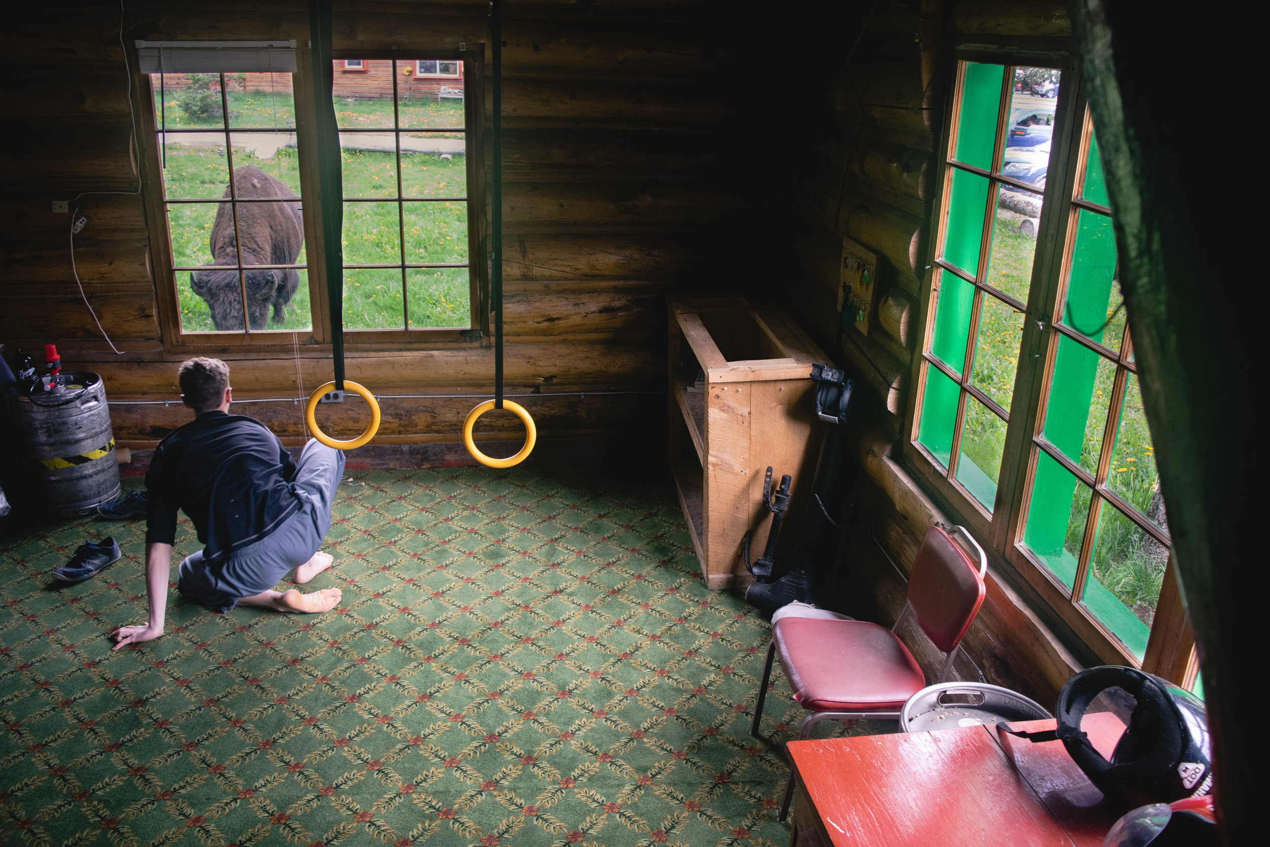 """My brother working out in my """"manager's office"""" with a bison grazing out the window."""