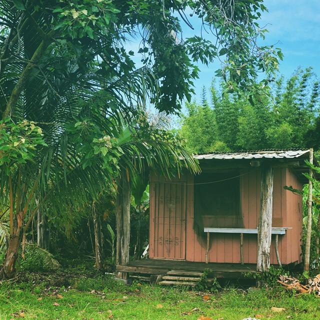 My little pink cabin on the Big Island of Hawaii.