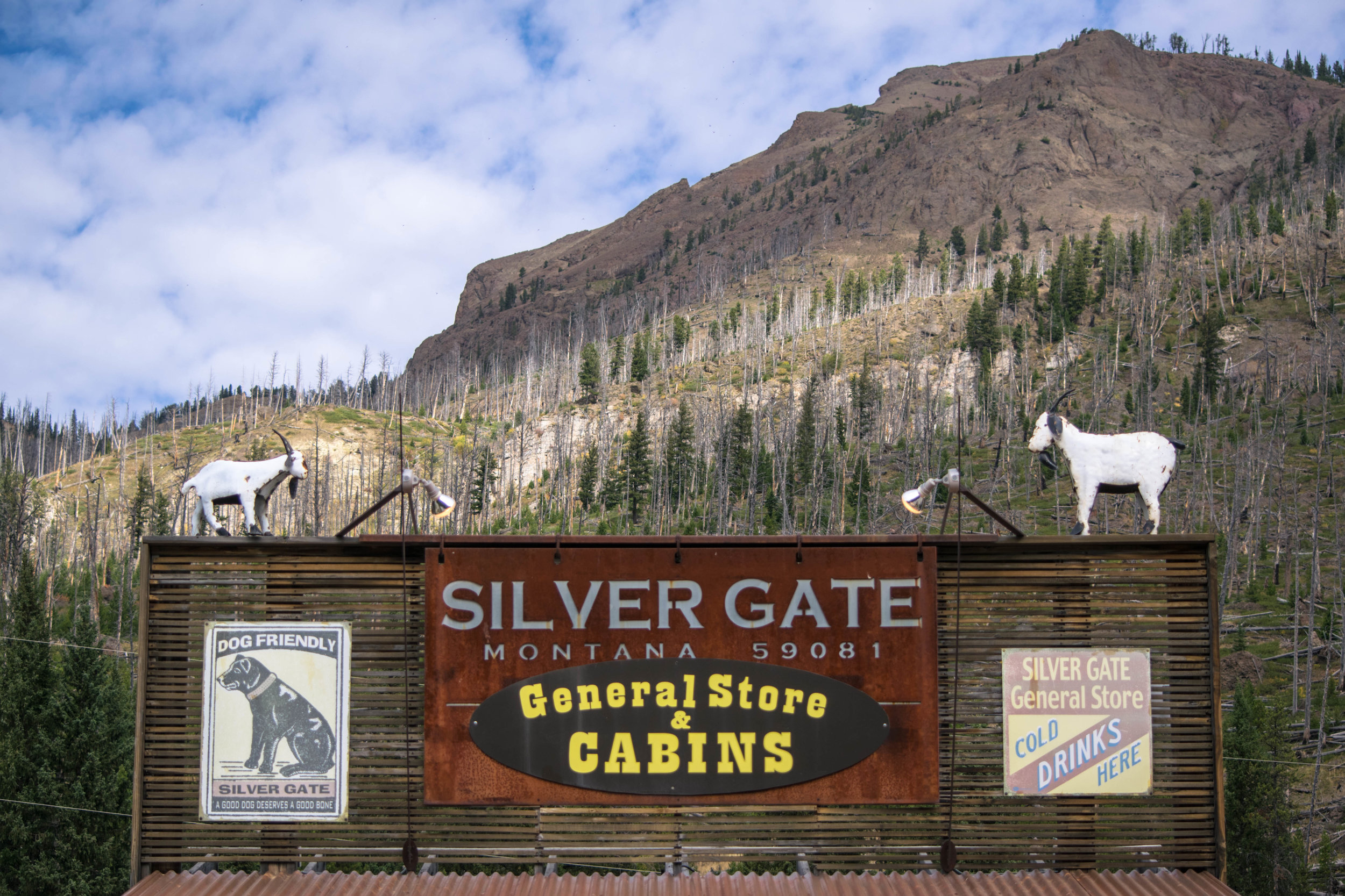 silver gate general store
