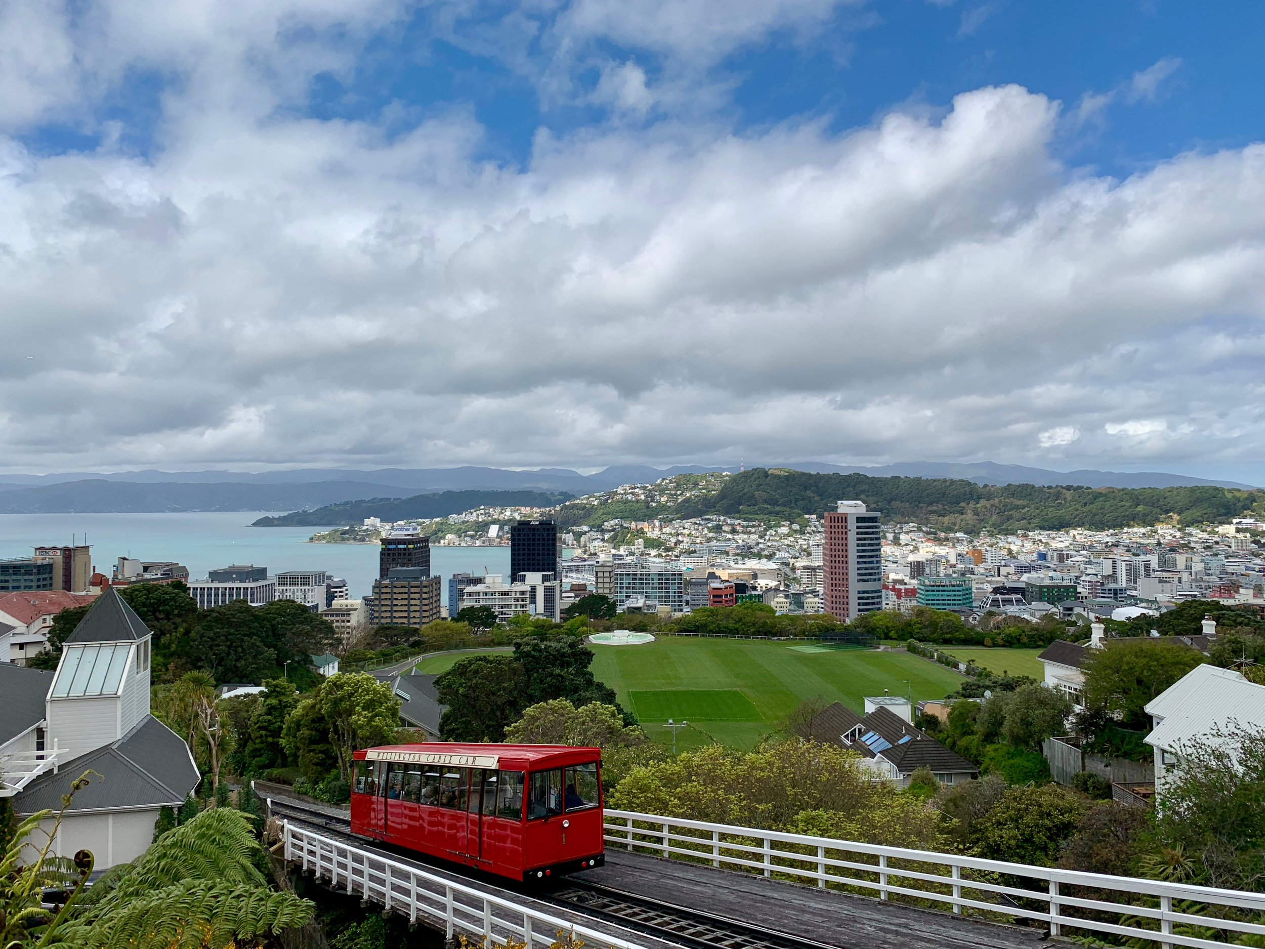 The contained beauty of Wellington
