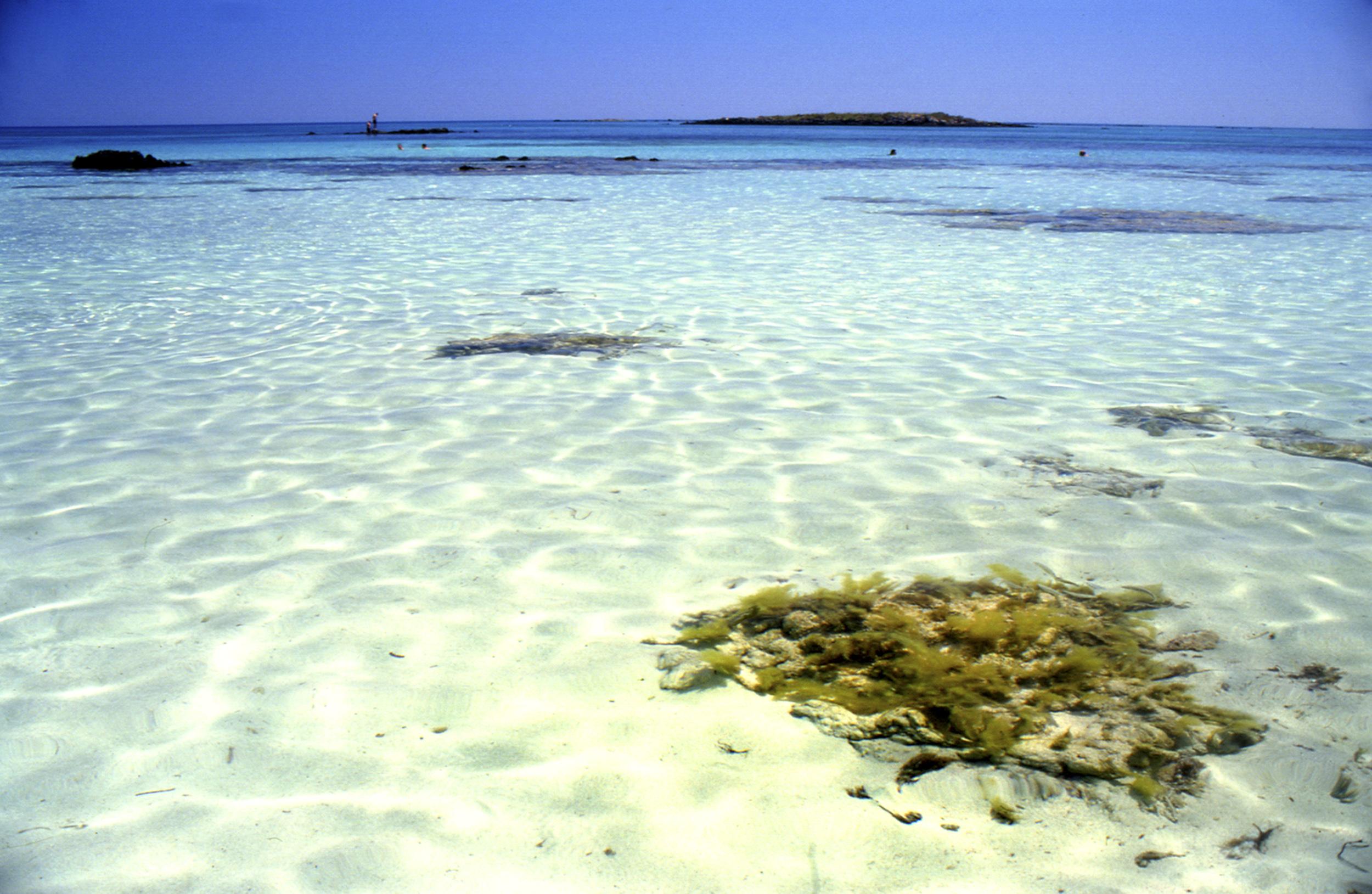 Greece, Crete, Elafonisi