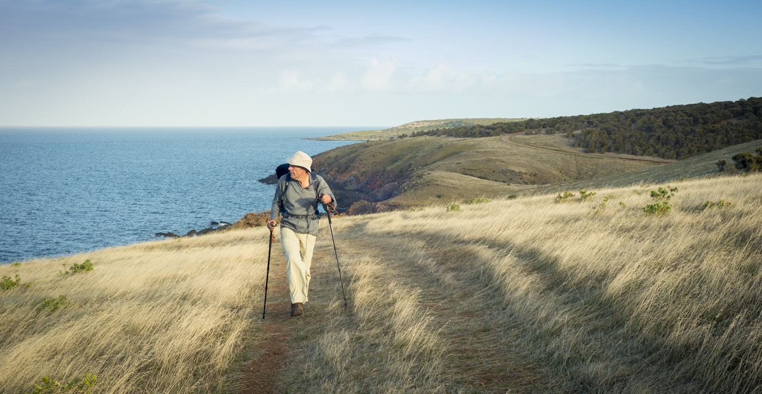 A good bit of the track, seems like a stroll, with views to KI and the southern ocean.