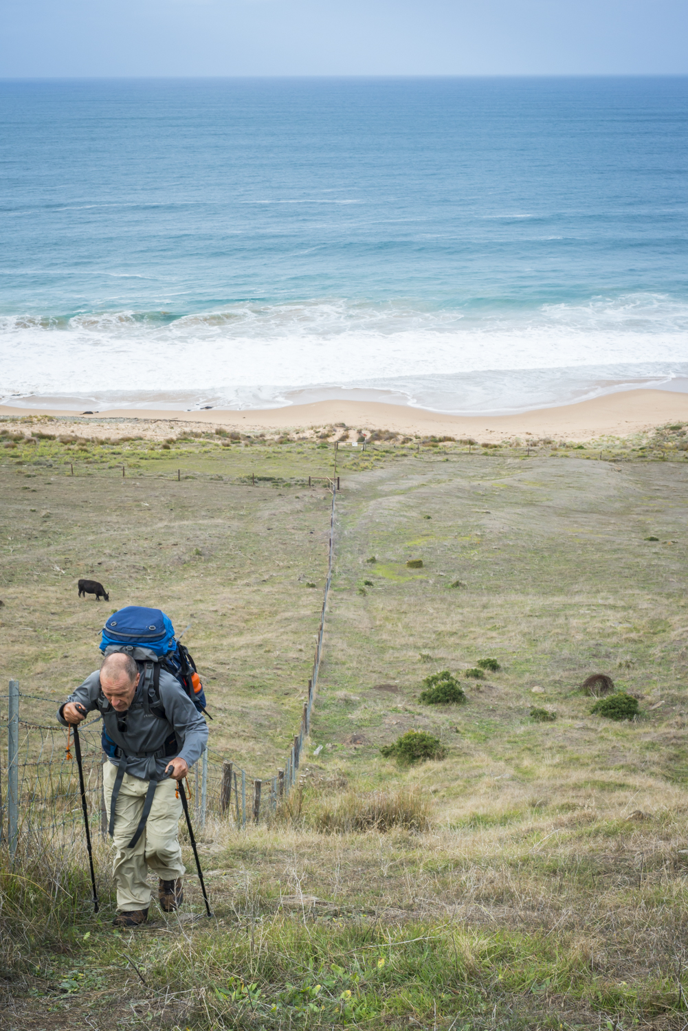 After the Tunkalilla beach soft sand, just a little hill to climb. I had to use the fence to stop me falling over backwards.